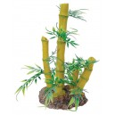 Bamboo Plant with Rock Base