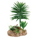 Desert Plant with Rock Base