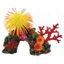 Aquatic Products Coral Reef