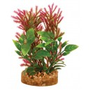Aquarium Plant with Sandstone Base