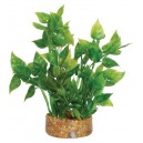 Airstone Base Aquarium Plant