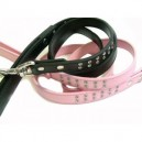 Crown Jewels Leather Dog Lead